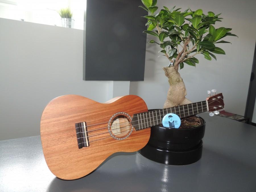 Ukulélé e guitarlélé para crianças (a partir dos 4 anos)